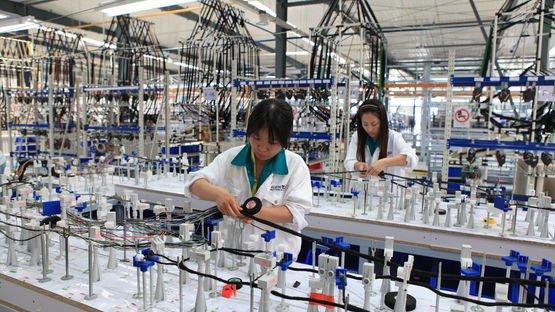 Kabelsatzmontage für die Automobilindustrie in Jining (China)