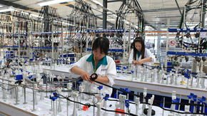 Cable Harness production for the automotive industry in Jining (China)