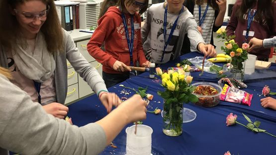 Spannende Experimente im Chemielabor in Kitzingen