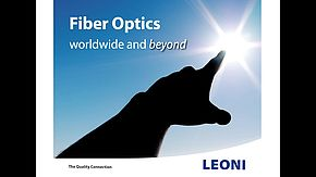Special optical fibers and assemblies